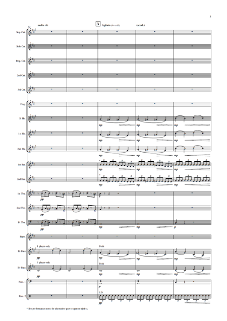 Prelude in C-sharp minor (Rachmaninoff, arr. Rob Bushnell) - Brass Band (Preview 6)