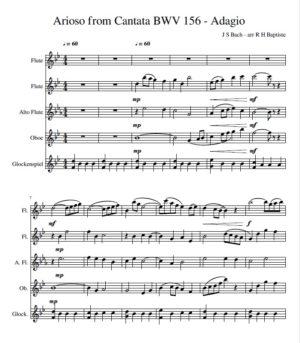 Arioso from Cantata BWV 156 – Adagio (J S Bach)