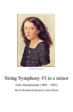 String Symphony #3 set for Woodwind Quartet