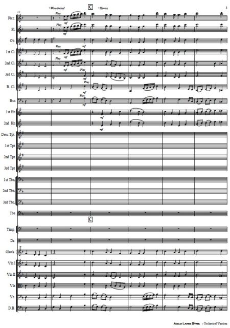 024 Auld Lang Syne Orchestra SAMPLE page 03