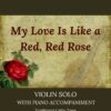 My Love Is Like a Red, Red Rose - Celtic Violin Solo with Piano Accompaniment cover