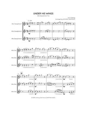 UNDER HIS WINGS – alto sax trio