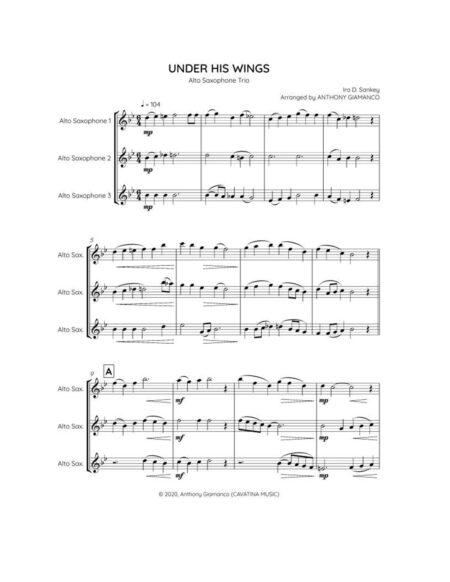 Under His Wings - alto sax trio