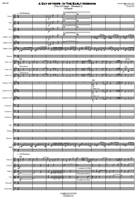 483 A Day of Hope Orchestra SAMPLE page 01