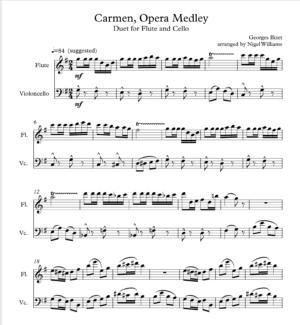 Opera Medley, Carmen, duet for flute and cello