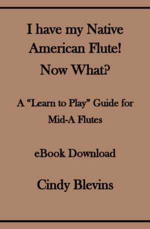I Have My Native American Flute! Now What? (Learn to play your NA flute)