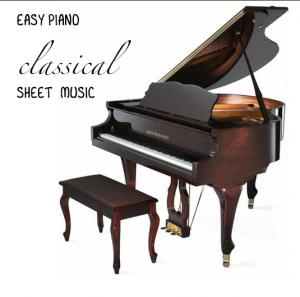 Prelude Chopin (raindrop) op.28, n. 15