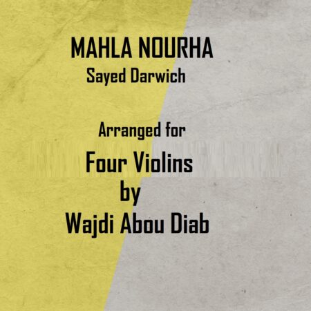 cover mahla nourha violin