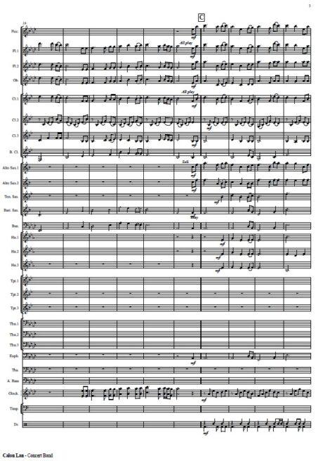521 Calon Lan Concert Band SAMPLE page 003