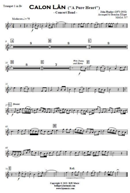 521 Calon Lan Concert Band SAMPLE page 007