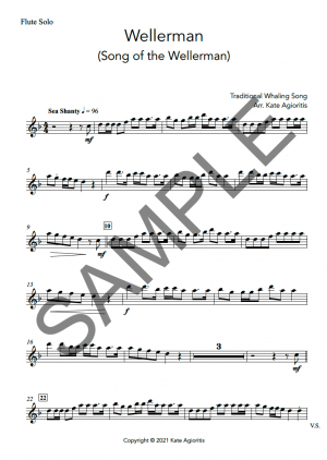 Wellerman – Instrumental Solo with Play-Along Accompaniment Track – for Flute, Clarinet, Oboe or Bassoon