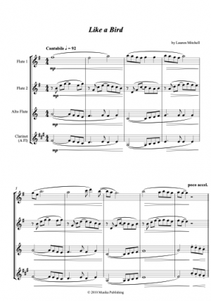 Like a Bird – for Flute or Flute/Clarinet Trio