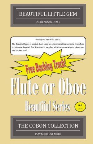 No.2 Beautiful Little Gem (Flute or Oboe)