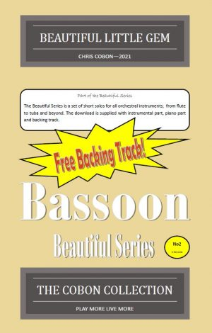 No.2 Beautiful Little Gem (Bassoon)