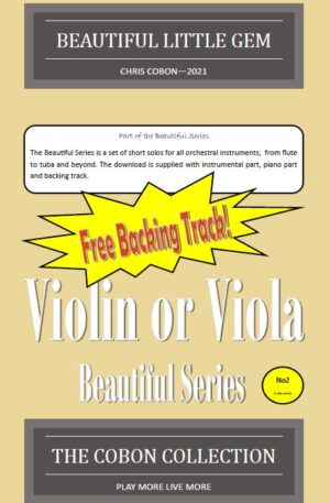 No.2 Beautiful Little Gem (Violin or Viola)