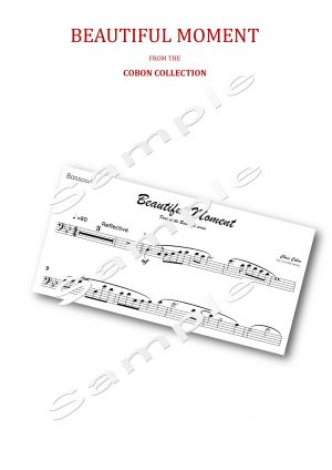 No.4 Beautiful Moment (Bassoon)