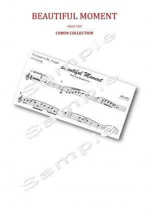No.4 Beautiful Moment (Trumpet, Flugel or Cornet)