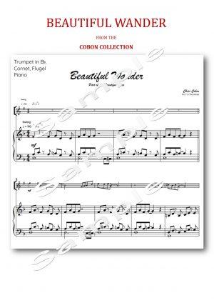 No.7 Beautiful Wander (Trumpet, Flugel or Cornet)