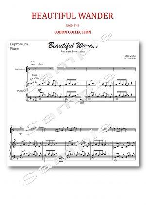 No.7 Beautiful Wander (Euphonium)