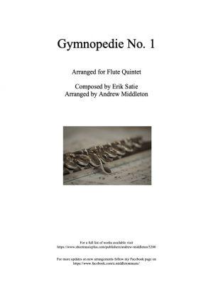 Gymnopedie No. 1 arranged for Flute Quintet
