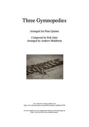 Three Gymnopedies arranged for Flute Quintet