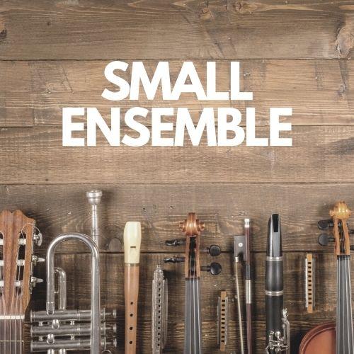Small Ensemble