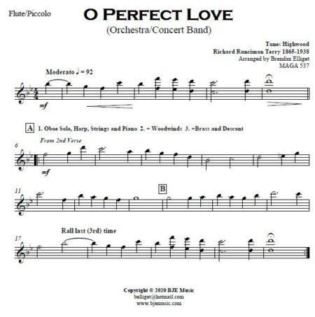 499 O Perfect Love CB Orchestra SAMPLE page 003
