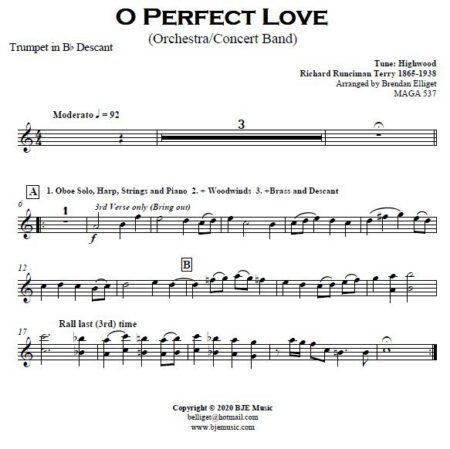 499 O Perfect Love CB Orchestra SAMPLE page 005
