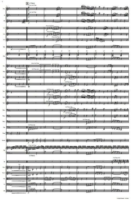 557 A Joyful Sound Orchestra SAMPLE page 002